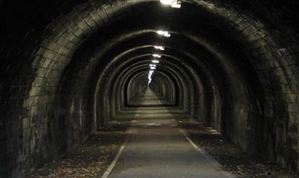 Туннельный метод вегаса форекс курс биржевой торговли